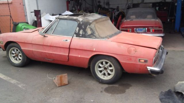 Alfa Romeo Spider Stored In Garage Since Classic - Alfa romeo spider 1974 for sale