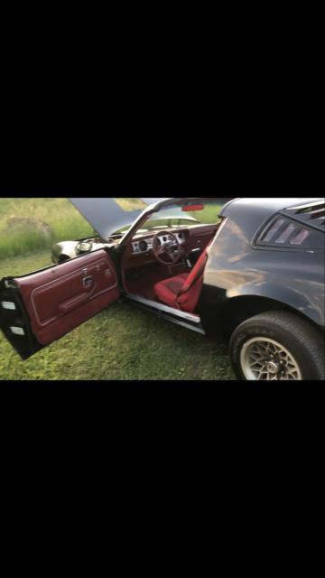 1979 Trans Am Firebird Pontiac Black No Reserve !!! hurst t